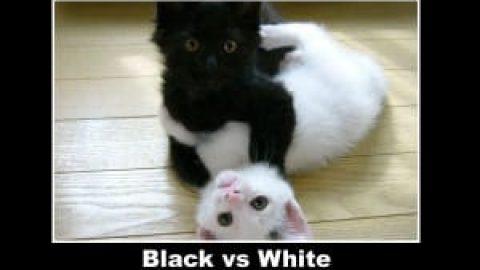 Blackhat vs Whitehat presentations